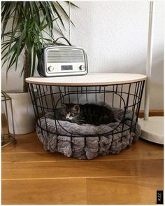 Coffee table Odense cm That s nice from Xenos - Katzen Cool Cat Beds, Cool Cats, Cat House Diy, Diy Home Decor, Room Decor, Cat Room, Pet Furniture, Odense, Home Improvement