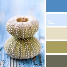 Color Palette #2077