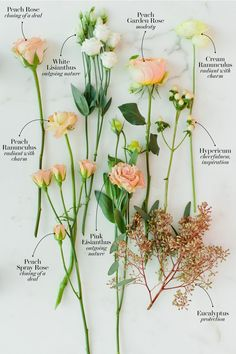 The Secret Language of Flowers: These Are the Most Romantic .- The Secret Language of Flowers: These Are the Most Romantic Wedding Bouquets - Romantic Wedding Flowers, Bridal Flowers, Flower Bouquet Wedding, Romantic Weddings, Most Romantic, Flower Meanings, Language Of Flowers, Deco Floral, Types Of Flowers