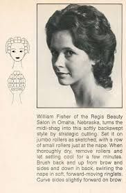 Image result for wet set hair section pattern