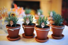 I made these potted lavender plants and handed them out as one of my Spring wedding favors.