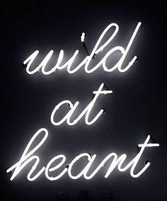 wild at heart <3