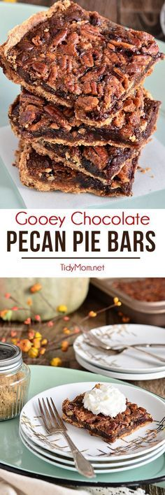 Fingers were licked, not a crumb left on a plate. This pecan pie bar recipe just may replace the pie altogether. Gooey Chocolate Pecan Pie Bars at TidyMom.net