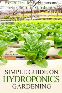 Simple Guide on Hydroponics Gardening Expert Tips for Beginners and Intermediate Gardeners -- Learn more by visiting the image link.