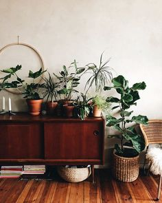 The Studio- Plants all over — Herz und Blut – Interior Diy Home Decor, Room Decor, Home Renovation, Home Decor Inspiration, Decoration, Home And Living, Interior And Exterior, Beautiful Homes, Sweet Home