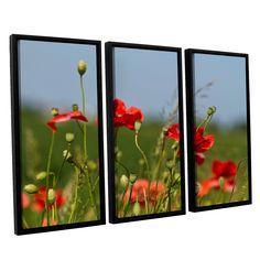3097A by Lindsey Janich 3 Piece Floater Framed Canvas Set