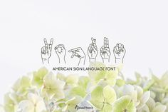 """""""Koprun"""" is a dingbat font of the American Sign Language. Kaprun comes in 2 styles - regular and solid. Sign Language Words, American Sign Language, French Lessons, Spanish Lessons, Teaching French, Teaching Spanish, Dingbat Fonts, Alphabet, Writing Lessons"""