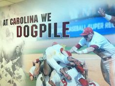 New graphic at Carolina Stadium