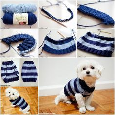 Dog Sweater – Tutorial / Pattern on Page 4 ♥ – CROCHET. Description from pinte… Dog Sweater – Tutorial / Pattern on Page 4 ♥. Knitted Dog Sweater Pattern, Knit Dog Sweater, Sweater Knitting Patterns, Crochet Patterns, Knitting Sweaters, Free Knitting, Easy Patterns, Crochet Dog Clothes, Small Dog Sweaters