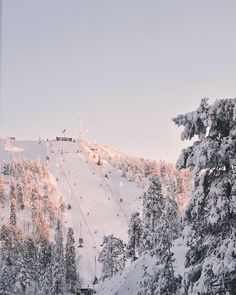 holiday places Soon winter snow will come Snowboarden Winter Snow, Winter Time, Winter Christmas, Summer Snow, Christmas Snowman, Winter Schnee, Ski Mountain, Ski Season, White Aesthetic