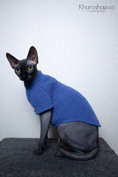 gifts for cats Monochromatic Cat's Hand Knitted Easy Sphynx's Tank Top, Soft Tank Top For Cat Clothes, Warm Cat Sweater For Gift Love Sphynx, Cat Clothing - Very soft, warm and cozy han Sweater Knitting Patterns, Easy Knitting, Shawl Patterns, Crochet Tank, Crochet Vests, Cat Sweaters, Sphynx Cat, Cat Accessories, Cat Supplies