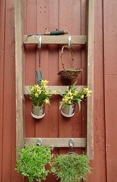 Hanging herb garden made with old tools and ladder.