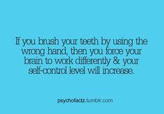 Random Fact! Try this next time you brush your teeth! #dental2000nj