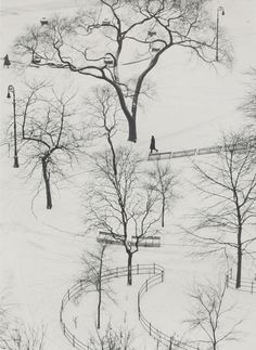 Washington Square, Winter; André Kertész (American, born Hungary, 1894 - 1985); New York, New York, United States; 1954; Gelatin silver print; 24.6 x 17.9 cm (9 11/16 x 7 1/16 in.); 84.XM.193.22; J. Paul Getty Museum, Los Angeles, California