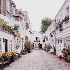 { Makes me dream of cute streets in London . . . From Instagram @sashafogel }