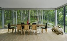 transparent house in the forest