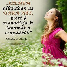 Szemem állandóan az Úrra néz... Biblical Quotes, Prayers, Thankful, Bible, Christian, Urban, God, Pictures, Deco