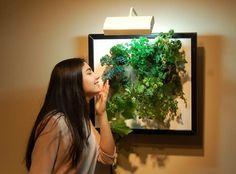 The Wall Garden is Living Art