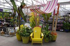 Al's Garden Center - Woodburn, Oregon