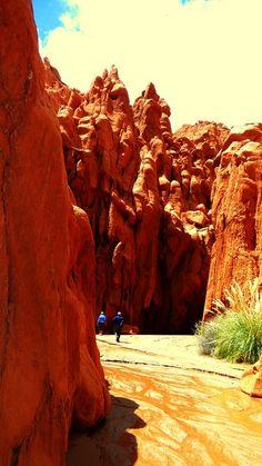 Valle de las Cuevas, Salta. Argentina