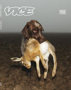 Vice mag published some great ones this year (go check by clicking 'Vice' above) They carrie a great vibe, here another ace cover Vice magazine (edition from the Netherlands) Photography by Isabella Rozendaal Vice Magazine, Print Magazine, Magazine Covers, Clever Advertising, Poster Layout, Printed Pages, Creative Pictures, Covergirl, Editorial Design