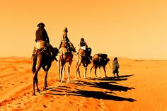 nomad camel - Google Search