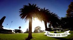 GoWood wooden sunglasses summer video 2015