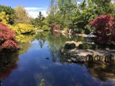 Asian Valley Lewis Ginter Botanical Garden Richmond Virginia (I need to move to America like NOW!!))