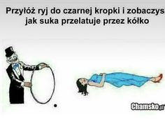 Wtf Funny, Funny Memes, Have Time, To Działa, Illusions, Haha, Poems, Humor, Reading