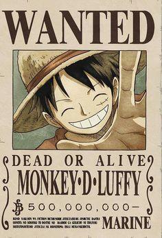 ~Luffy envió todos los carteles del equipo~