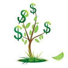 Conflictos de dinero, como resolverlos desde la Bioneuroemocion, mediante el Transgeneracional