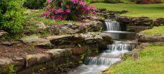Hodges Gardens State Park | Friends of Hodges Gardens Louisiana