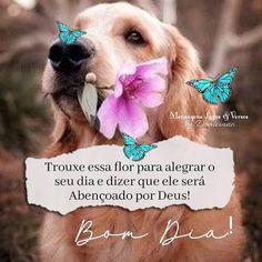 Teddy Bear, Maria Emilia, Instagram, Cute Good Morning Messages, Good Morning Photos, Imagenes De Amor, Good Morning Images, Verses, Psalms