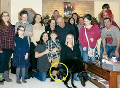 family picture dog poop yellow circle