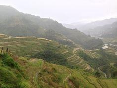 Banaue Rice Terraces, Mountain Province