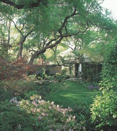 Landscaping for Privacy: Innovative Ways to Turn Your Outdoor Space into a Peaceful Retreat: Marty Wingate: 9781604691238: Amazon.com: Books