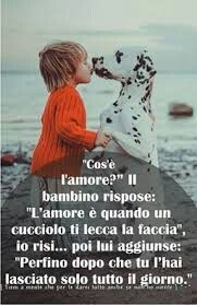 Cos è l amore Romantic Men, Dances With Wolves, Love And Co, Feelings Words, Healthy Words, Spiritual Thoughts, Word Up, Maltese, I Love Dogs