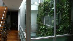 verde 360º dando vida a un patio interior