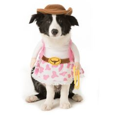 Thrills & Chills™Pet Halloween Stand Up Cowgirl Pet Costume | Costumes | PetSmart