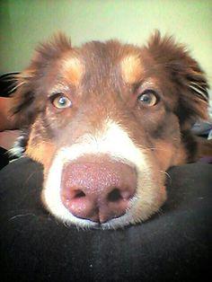 Tas de beaux yeux tu sais?