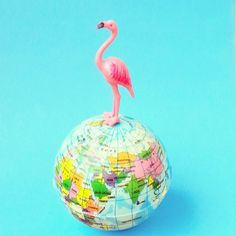 On top of the world :) #aflamingoaday #global #earth #ontopoftheworld #globe #flamingos #flamingo #365daysproject #happy