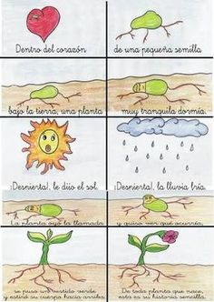 Resultado de imagen para poesía para niños la pequeña semilla