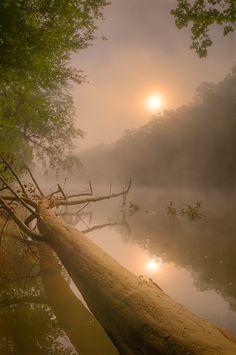 Misty Sunrise, Missouri, USA, Photo by  Robert Charity.