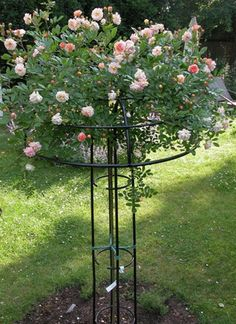 Vertical Rose Gardening Giverny Rose Umbrella, from Classic Garden Elements. Landscaping With Fountains, Garden Landscaping, Dream Garden, Garden Art, Rose Garden Design, Classic Garden, Climbing Roses, Climbing Rose Trellis, Garden Trellis