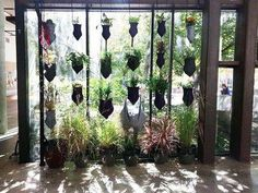 Best Aquaponics Plants Refferal: 3007505470 #NummularEczema Aquaponics Diy, Aquaponics System, Hydroponics, Aquaponics Greenhouse, Greenhouse Plans, Cool Things To Make, Things To Come, Growing Veggies, Garden Windows