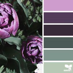 Explore Design Seeds color palettes by collection. Purple Color Palettes, Spring Color Palette, Nature Color Palette, Green Colour Palette, Purple Color Schemes, Kitchen Colour Schemes, Room Color Schemes, Kitchen Colors, Kitchen Design