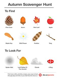 autumn treasure hunt - Google Search