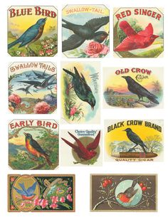 Free Vintage Bird Collage Sheet - Other to download or save as well.