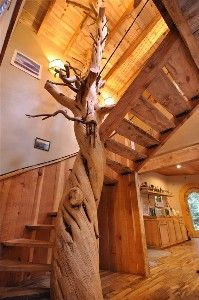 800 year old Juniper Tree Spiral Stair Case with myrtle wood treads