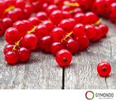 Reiner Johannisbeersaft und Tee aus den Blättern gilt bei rheumatischen Schmerzen, Gicht und Gelenkentzündungen als hilfreich, denn die Beeren enthalten gefäßschützende und antibakteriell wirkende Substanzen. Rote und weiße Johannisbeeren sind durch ihren Gehalt an Gerbstoffen gut gegen Zahnfleischentzündungen und regulieren durch ihren hohen Gehalt an Ballaststoffen den Appetit. 100g ca. 56kcal Fruit, Vegetables, Food, Gout, Candy Bars, Fiber, Health Snacks, Health, Veggies